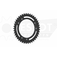 Sprocket Rear 525-41T Steel